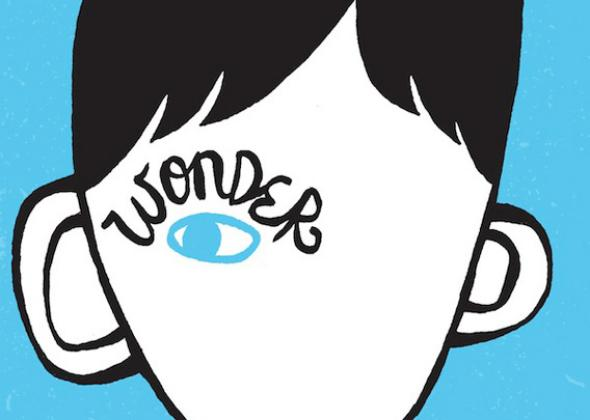 121009_DX_WonderBook.jpg.CROP.promo-mediumlarge