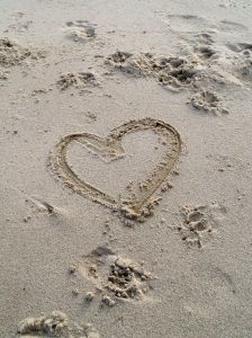 true-love_2767240