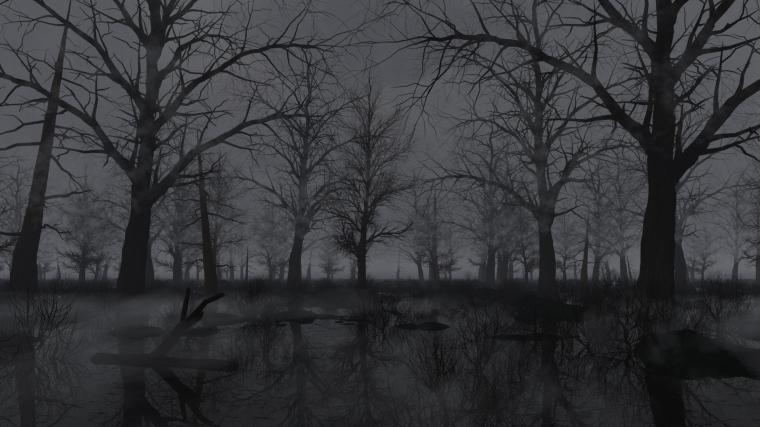 dark swamp2
