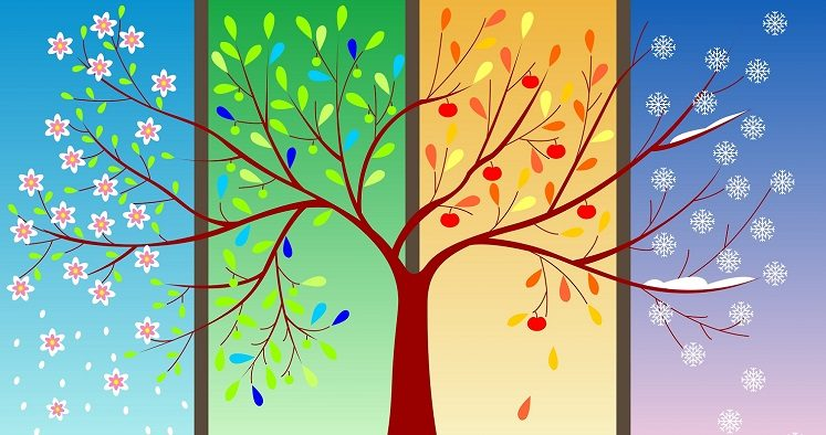 Four-seasons-tree-1r-747x394