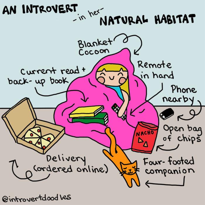 funny-introvert-comics-64-57443ca53453c__700